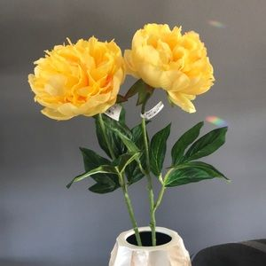 NWT Set of 2 Pier 1 yellow Peonies